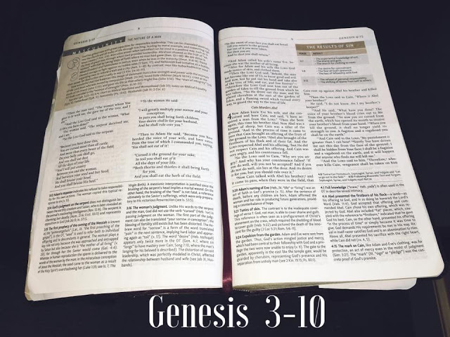 Devotional 2 – Genesis 3-10 True Freedom